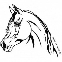 Motif cheval arabe, grand...