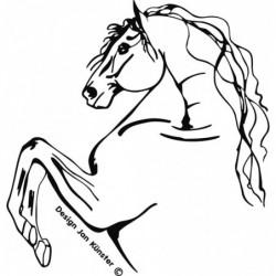 Motif cheval andalou, grand...